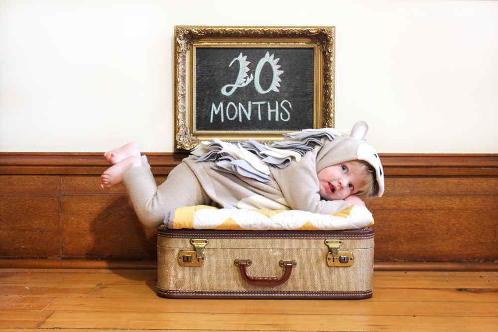 twenty months with olive